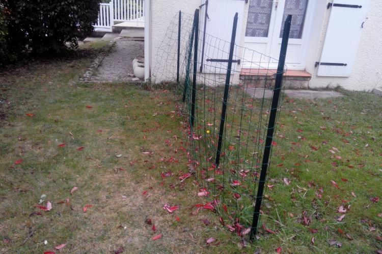 Ancienne clôture
